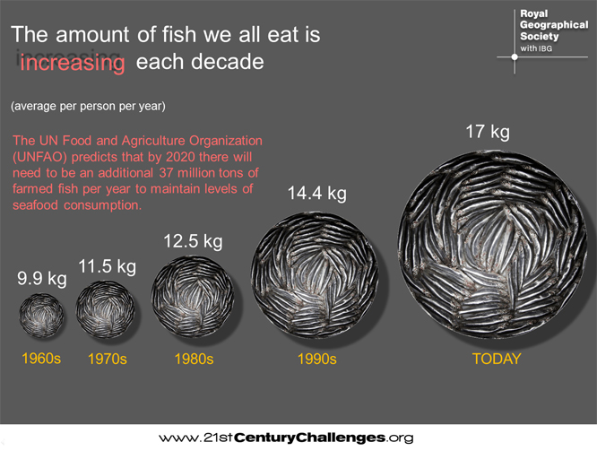 amount-of-fish-we-eat