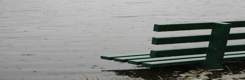 bench-wp